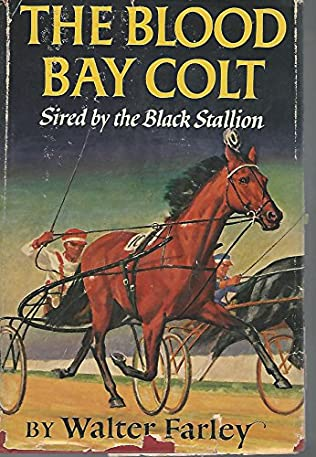 book cover of The Black Stallion\'s Blood Bay Colt