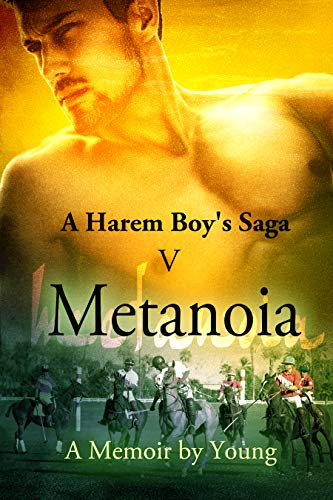 Metanoia (A Harem Boy's Saga Book 5) by [Young]