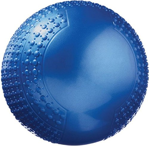 Fitness Gear 10 lb. Soft Medicine Ball, Blue