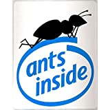 Ants inside: the truth about computers (Pisolo Books)
