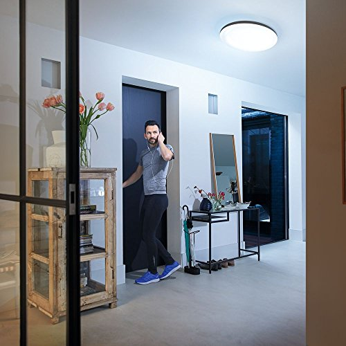 Philips Hue White Ambiance Cher Ceiling Light Black