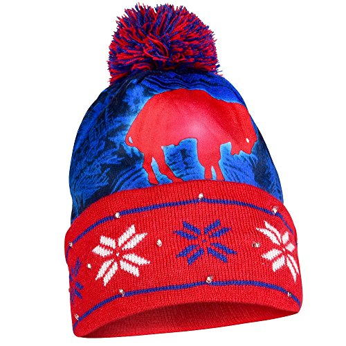 Buffalo Bills Official NFL Big Logo Beanie Stocking Stretch Knit Sock Hat by Forever Collectibles (Big Logo Beanie)