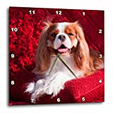 3dRose Danita Delimont - Dogs - Regal Cavalier rests on a red pillow, MR - 15x15 Wall Clock (dpp_258256_3)