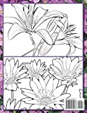 Beautiful Flowers: An Adult Coloring Book with 50