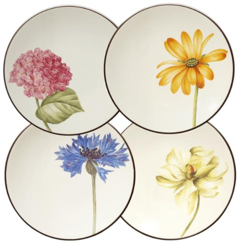 Noritake Colorwave Floral Appetizer Plates, Chocolate Brown, Set of 4 (Noritake Platter Stoneware)