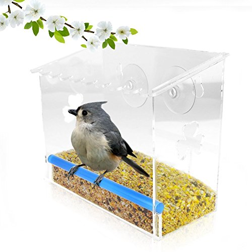 Antique Brass Seed Tube Feeders (Up Window Bird Feeder | Transparent Window Mounted Bird Feeder Glass Box with Perch and Suction Cup | Durable Squirrel Weather Proof Water Drain Acrylic for Fun Educative Home Bird Watching | 1372)
