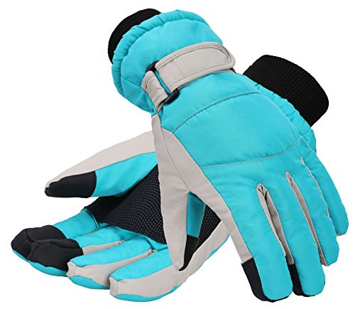 Livingston Women's Thinsulate Lining Touchscreen Snow Ski Gloves, Blue, Small