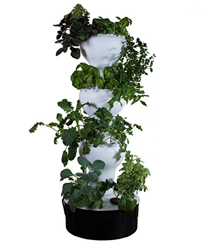 Foody 12 - Vertical Hydroponic Garden - Self Watering - Rotates Automatically - 44 Plant Sites - Grow Great Tasting Food Year Around - Made of Food Grade Polypropylene by Foody Vertical Gardens