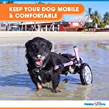 Walkin' Wheels Dog Wheelchair - for Small Dogs