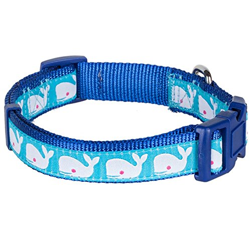 Blueberry Pet 3/4-Inch Ocean Beach Theme Basic Polyester Nylon Dog Collar, Medium