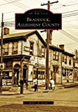 Braddock, Allegheny County, Robert M. Grom, 0738563021