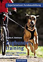 Zughundetraining: Canicross, Bikejöring, Scooter, Trike