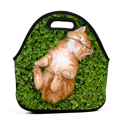 Clifford L Patterson Grass Sleeping Cat Personalized Reusable Soft Neoprene Lunch Bag Waterproof and Insulated for Ladies Men and Children Use School Work Office]()