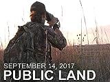 September 14 - Public Land: Nebraska Bowhunt, Coyote at 10 feet