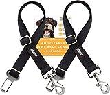 Friends Forever 2-Pack, Adjustable Black Nylon Dog Cat Car Seat-belt, Vehicle Tether, Restraint Lead for Pets