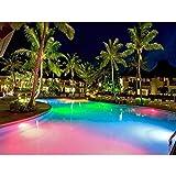 Hayward LPCUS11050 Universal ColorLogic LED Pool