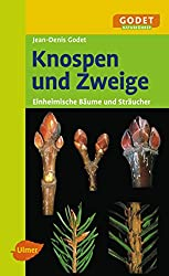 Knospen und Zweige - Einheimische Bäume und Sträucher