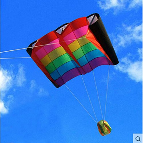 Birds Wing Weifang Kite Flying Umbrella Cloth Outdoor Fun Sports Parachute Pipas Cometa Voladora Stunt by Kites