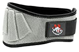 Iron Body Team Fully Adjustable Weightlifting Belt | Thick Lower Back & Core 6 inch Support for Men & Women | (Gray L)