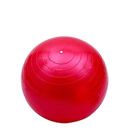 LILIJD Balones De Ejercicio Balones De Estabilidad Bolas ...