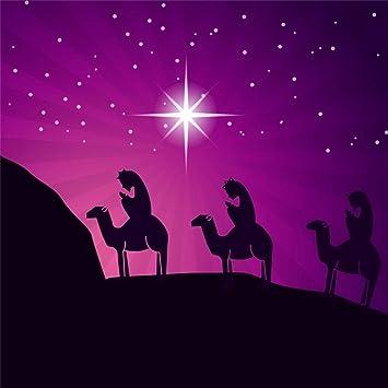Amazon Com Aofoto 10x10ft Nativity Scene Backdrop Stars Birth Of