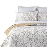 mixinni Reversible 100% Cotton 3-Piece Beige Embroidery Pattern Elegant Quilt Set with Embroidered Decorative Shams Soft Bedspread&Coverlet Set-Full/Queen