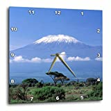 3dRose dpp_73850_3 Africa, Tanzania, Mt Kilimanjaro, Landscape and Zebra-Af45 Gje0018-Gavriel Jecan-Wall Clock, 15 by 15-Inch