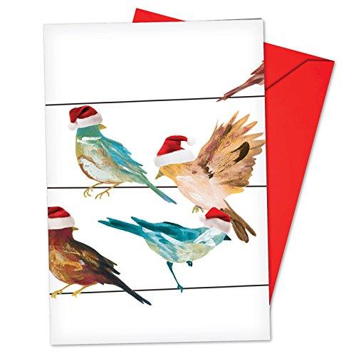 12 'High Wire Birds' Boxed Christmas Cards with Envelopes 4.63 x 6.75 inch, Holiday Greeting Cards with Birds Wearing Santa Hats, Cute Bird-Themed Seasonal Stationery ()