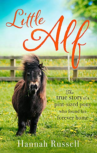 Little Alf: The true story of a pint-sized pony who found his forever home ()