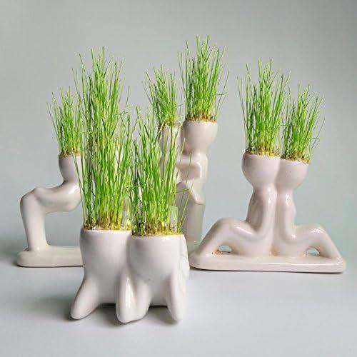 Kofun Cute Mini Novel Bonsai Head Grass Doll Hair White Lazy Man Rely Plant Garden DIY 5.5x11cm//2.17x4.33