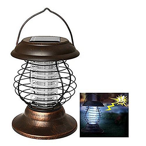 Solar Light And Insect Wacker in Florida - 1