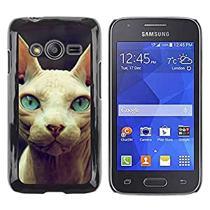 TopCaseStore / la caja del caucho duro de la cubierta de protección de la piel - Sphynx Donskoy Peterbald Blue Eyes Cat - Samsung Galaxy Ace 4 G313 SM-G313F