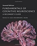img - for Fundamentals of Cognitive Neuroscience, Second Edition: A Beginner's Guide book / textbook / text book