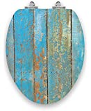 TOPSEAT Art of Acryl Elongated Toilet Seat w/ Slow Close Chromed Metal Hinges, Wood, Shabby Chic