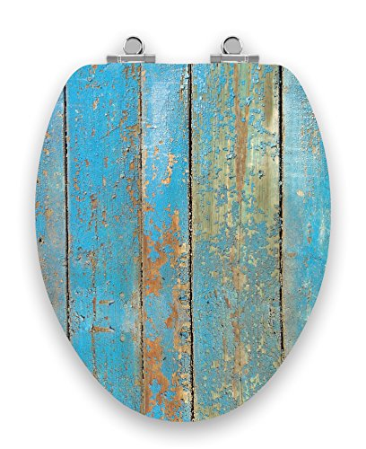 Hand Painted Toilet Seat - TOPSEAT Art of Acryl Elongated Toilet Seat w/ Slow Close Chromed Metal Hinges, Wood, Shabby Chic