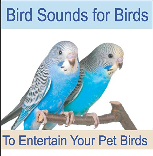 (Bird Sounds for Birds: To Entertain Your Pet Bird, Parrots, Cockatiel & Cockatoo)
