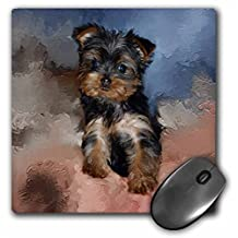 3dRose LLC 8 x 8 x 0.25 Inches Mouse Pad, Toy Yorkie Puppy (mp_3868_1)