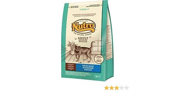 Nutro - Comida para gatos adultos, pescado, 1.5 kg: Amazon.es: Productos para mascotas