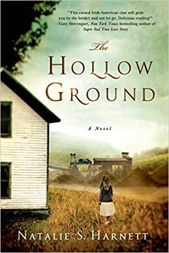 The Hollow Ground book cover