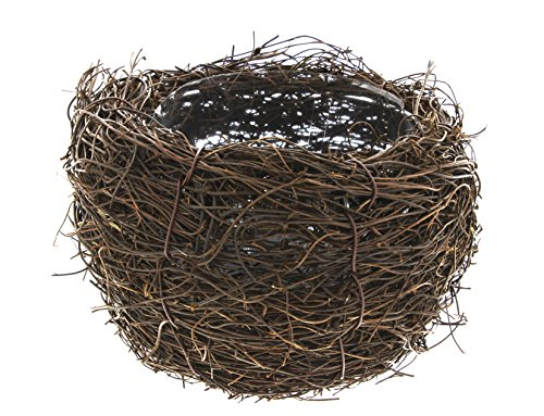 (Lucky Winner Bird's Nest Planter (5.5