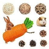 Rabbit Chew Toys, Pet Bunny Tooth Chew