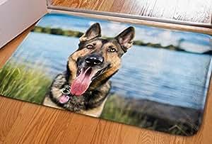 ouliu perros divertidos 3d impreso Doormats personalizado Durable interior/al aire libre Felpudo
