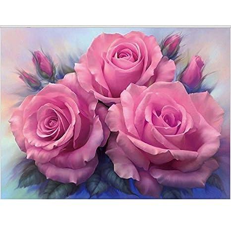 HJL®Diamante fotos cubo de Rubik diamante diamante bordados rosas , 20x25: Amazon.es: Hogar