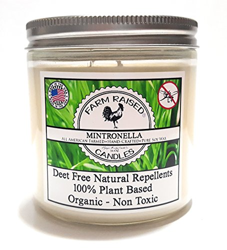 Mintronella Essential Oil Mosquito Repellent 100% Natural Soy Deck Party Patio Candle 80 Hr Large 16oz Citronella, Rosemary, Lavender-Mint. American Made Essential oils (1 Pack)