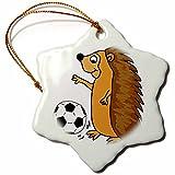 3dRose Cute Funny Hedgehog Playing Soccer Cartoon Snowflake Ornament, 3''