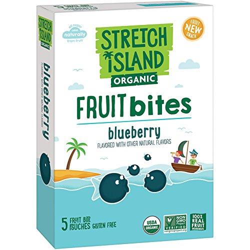 Stretch Island Organic Fruit Bites, Blueberry, 5 ct