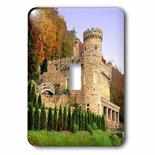 3dRose LLC lsp_55358_1 Berkeley Castle Single Toggle Switch
