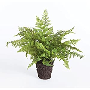 "CC 10.5"" SOFT FERN DROP-IN, 13x13x10.5 Inches 18"