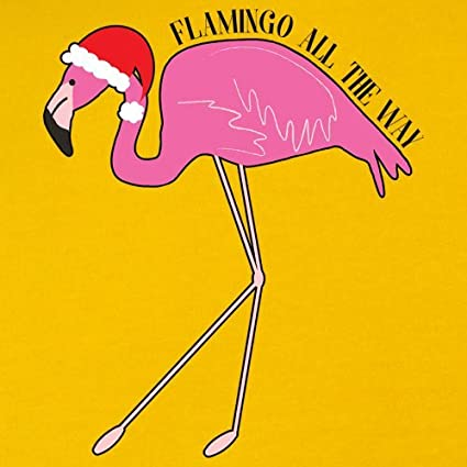 Flamingo All The Way 9 Colours 1-13 Years Kids Hoodie