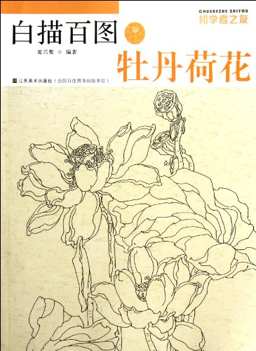 Peony And Lotus-Chinese Traditional Line Drawing(For Beginners) (Chinese Edition) - Lotus Peony